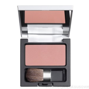 DDP POWDER BLUSH 04
